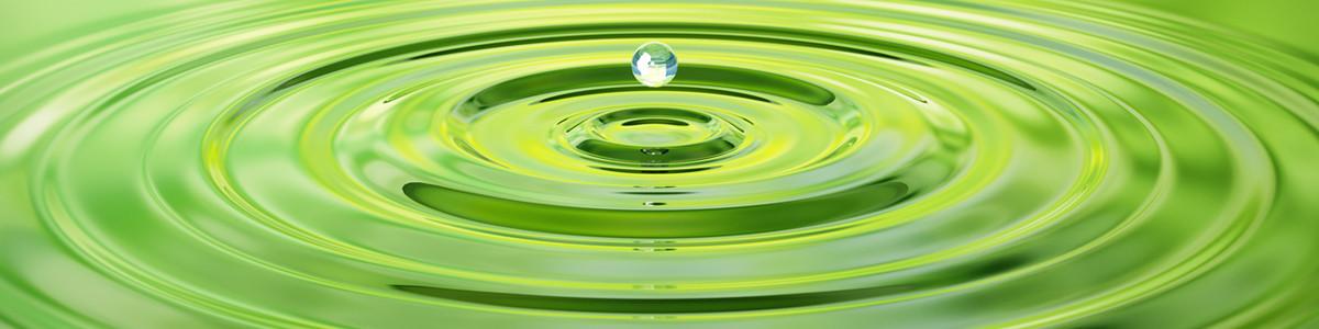 Spirulina Mikroalgen