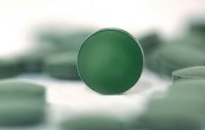 BioSpirulina<br />  Naturland<br />ca. 250 Tabletten = 100 g
