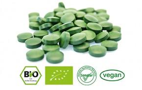 Gerstengras <br /> BIO, 250 Tabletten (100 g)