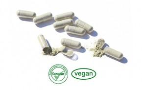Magnesium <br /> 180 Kapseln (99 g)