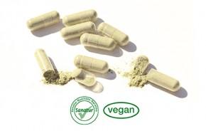 SPIRU® B-Vitamin Complex <br /> 90 Kapseln (54 g)