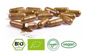 Traubenkern OPC & Vitamin C <br /> BIO, 200 Kapseln (108 g)